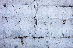 Graue konkrete Oberfläche Stockfotos