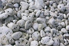 Graue korallenrote Steine. Lizenzfreie Stockfotos
