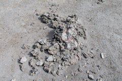 Graue Lava und Asche im Vulkan Lizenzfreie Stockbilder