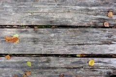 Graue Planken mit Fallblättern Stockfotografie