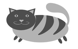 Graue starke, der getigerten Katze Katze mit den kurzen Tatzen und eine große Schnauze mit den Ohren, die aufwärts auf einem weiß Stockfotografie
