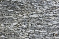 Graue Steinbeschaffenheitsfalten Stockfoto