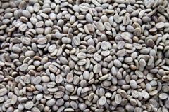 Graue ungebratene Kaffeebohnen Lizenzfreie Stockbilder