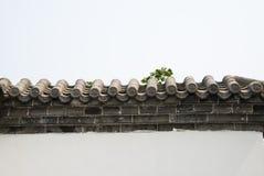Graue Ziegelsteine der Asiats-China-Antikengebäude, Fliesen und weiße Wände stockfotos