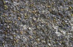 Grauer Betonmauerbeschaffenheitshintergrund Beunruhigte Steinoberfläche Rustikale Designschablone Lizenzfreie Stockfotografie