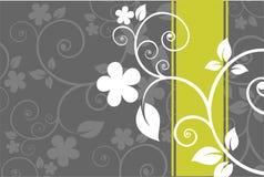Grauer Blumenhintergrund Stockfoto