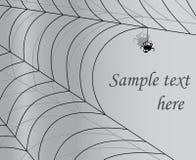 Grauer Hintergrund mit Spinne und Spinnennetz Stockbild