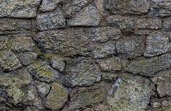 Grauer Stein der Beschaffenheitsschloss-Wand blockiert altes bedeckt mit grüner Moosbeschaffenheit Lizenzfreies Stockbild