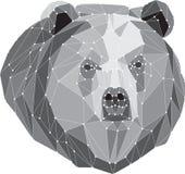 Graues Bärnporträt Abstraktes niedriges Polydesign Stockfotos