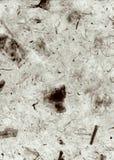 Graues Deckle umrandete natürliche Tapete, Papier, Beschaffenheit, Auszug, Stockfotos