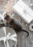 Graues Kätzchen berührt Weihnachtsbälle auf einer Geschenkbox stockfotografie