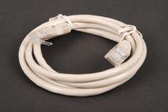 Graues Netzkabel des Verbindungskabels mit geformtem Stecker RJ45 lizenzfreie stockfotos