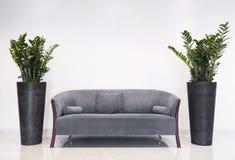 Graues Sofa im modernen Innenraum Stockfotografie