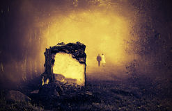Grav i en skog arkivbild