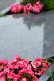 Grav på en kyrkogård med rosa blommor royaltyfria bilder