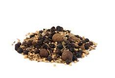 grava kryddor Royaltyfri Bild