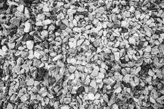 Grava machacada del granito texturizada Foto de archivo libre de regalías