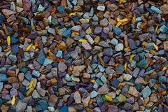 Grava multicolora vibrante en Vermont Fotografía de archivo libre de regalías