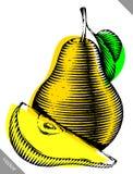 Gravado isolado grave a ilustração do vetor de uma pera ilustração stock