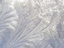 Gravado no gelo Fotografia de Stock
