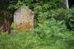 gravar Fotografering för Bildbyråer