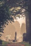 Gravar i kyrkogård Royaltyfri Fotografi