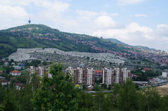 Gravar i Sarajevo Royaltyfria Bilder