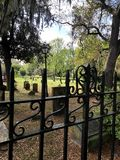 Gravar i Savannah royaltyfria bilder