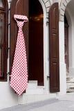 Gravata gigante Imagens de Stock