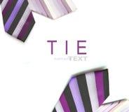 Gravatas roxas da cor Fotografia de Stock Royalty Free