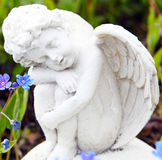 Grave angel with forget me not Stock Photography