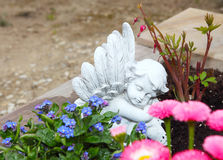 Grave angels and blossoms. In spring royalty free stock image