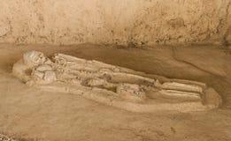 Grave burial skeleton human bones.  Royalty Free Stock Photos