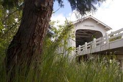 Grave Creek Covered Bridge Sunny Valley Vintage Road Transportat Stock Photography