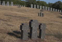 Grave crosses in a park Royalty Free Stock Images
