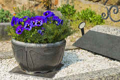 Grave. With flower bowl blue royalty free stock images