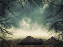 Grave in the forest Royalty Free Stock Image