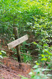 Grave in the forest Stock Images