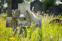 Grave & Grass Royalty Free Stock Photography