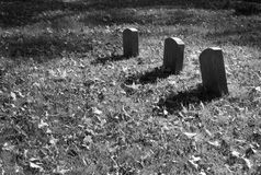Grave Markers Stock Image