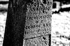 Black and White Grave Marker at an Old Cemetery. Grave markers and headstones, monuments and trees stand in the late afternoon light in an old Cemetery in Royalty Free Stock Photography