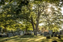 Grave Markers at an Old Cemetery. Grave markers and headstones and trees stand in the light afternoon light in an old Cemetery in Rochester, New York, July 2018 Stock Photography