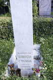 Grave Nadezhda Allilueva- Stalina (monument from I.V.Stalin) Stock Images