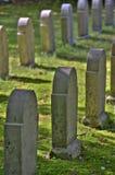 Grave Stock Image