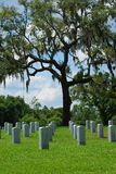 Grave Sites at Florida National Cemetery Stock Photography