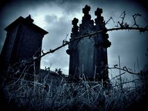 In the Grave Royalty Free Stock Photo