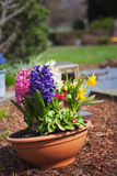 Grave with spring flowers Stock Photo