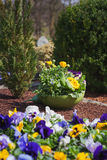 Grave with spring flowers Royalty Free Stock Image