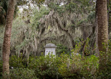 Grave Stone and Spanish Moss Stock Photos