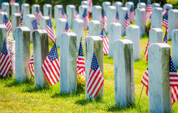 Grave stones with American flags in a military cemetery Royalty Free Stock Images